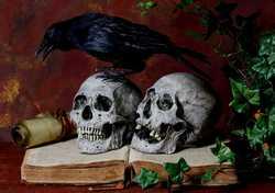 Mortality & ImmortalityIMG 9842