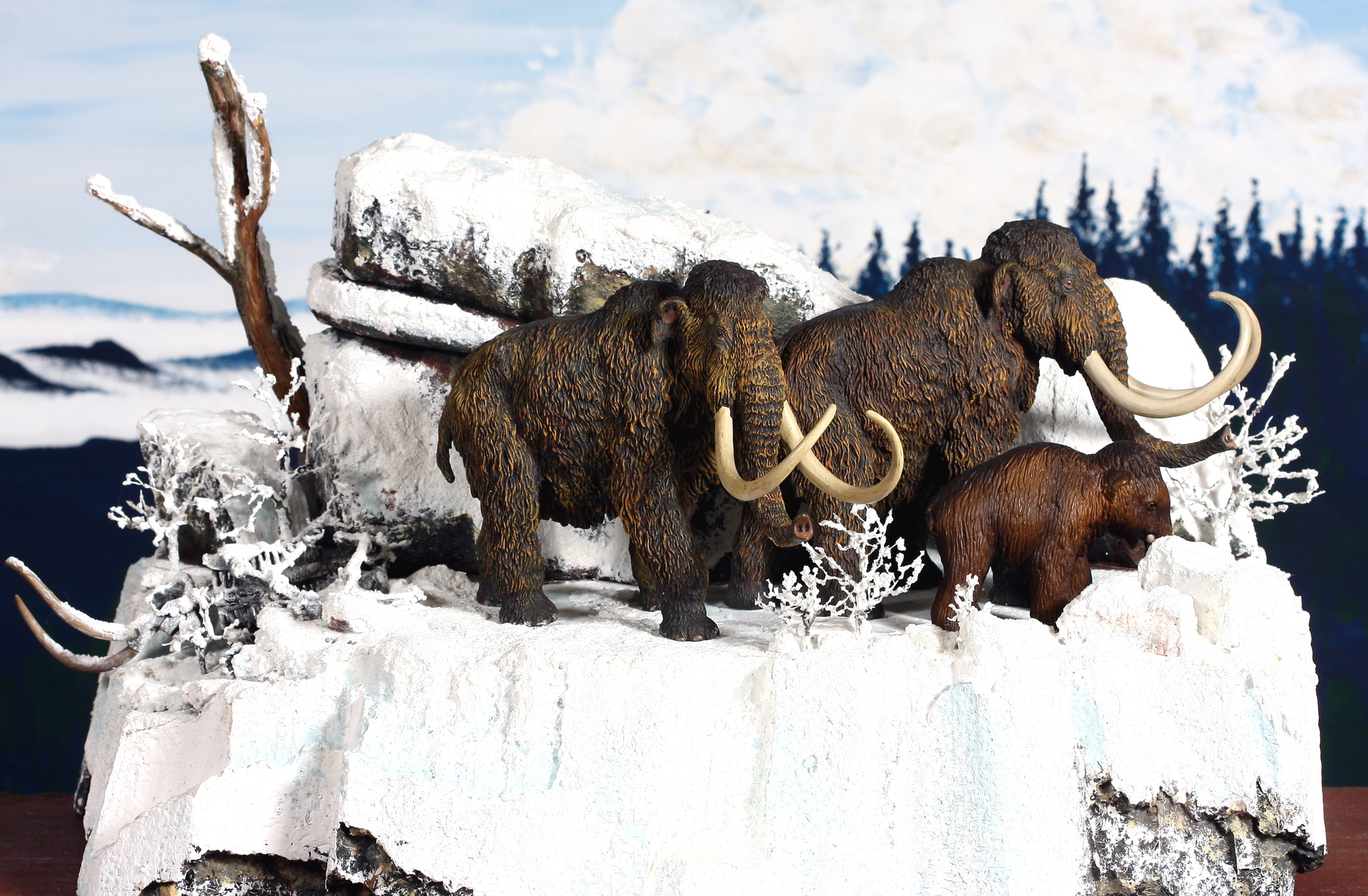 Woolly Mammoth 2120