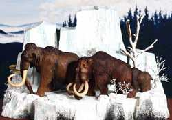 Wooly Mammoth family 2119