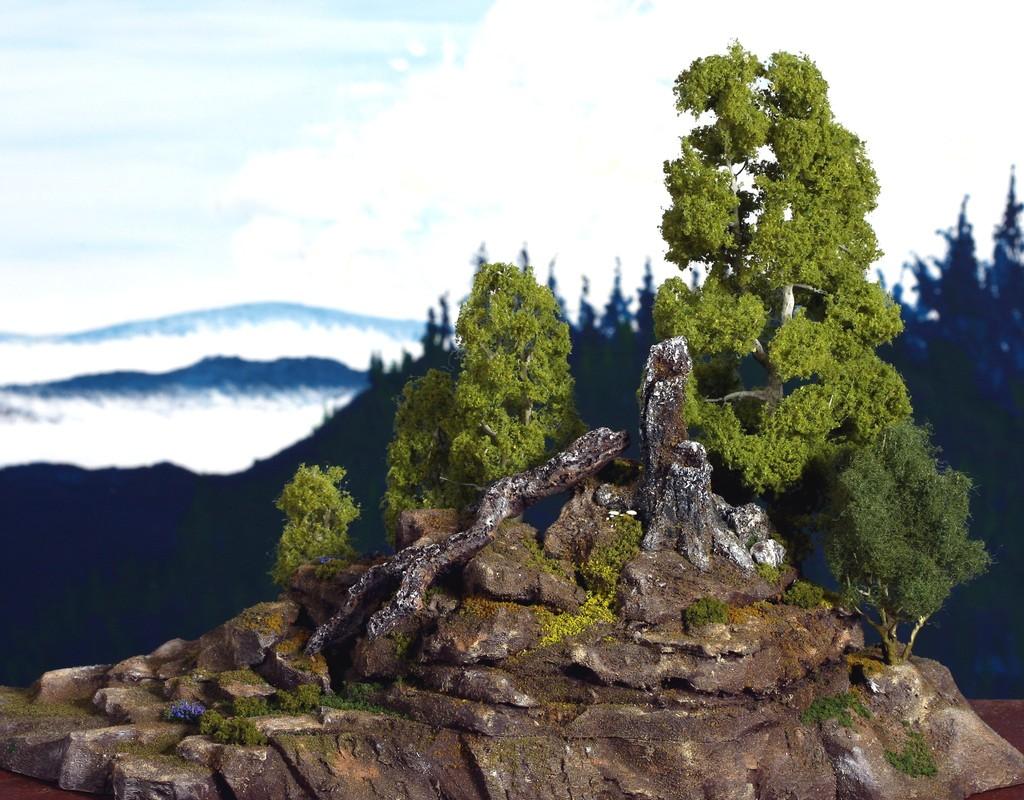 stump mountian 2129