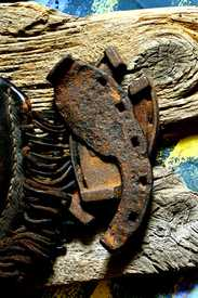 IMG 2203 003 Oxen Shoe