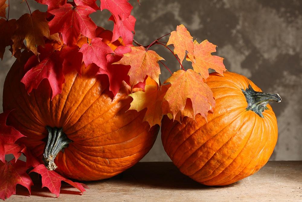 Fall foliageIMG_2513-a.jpg